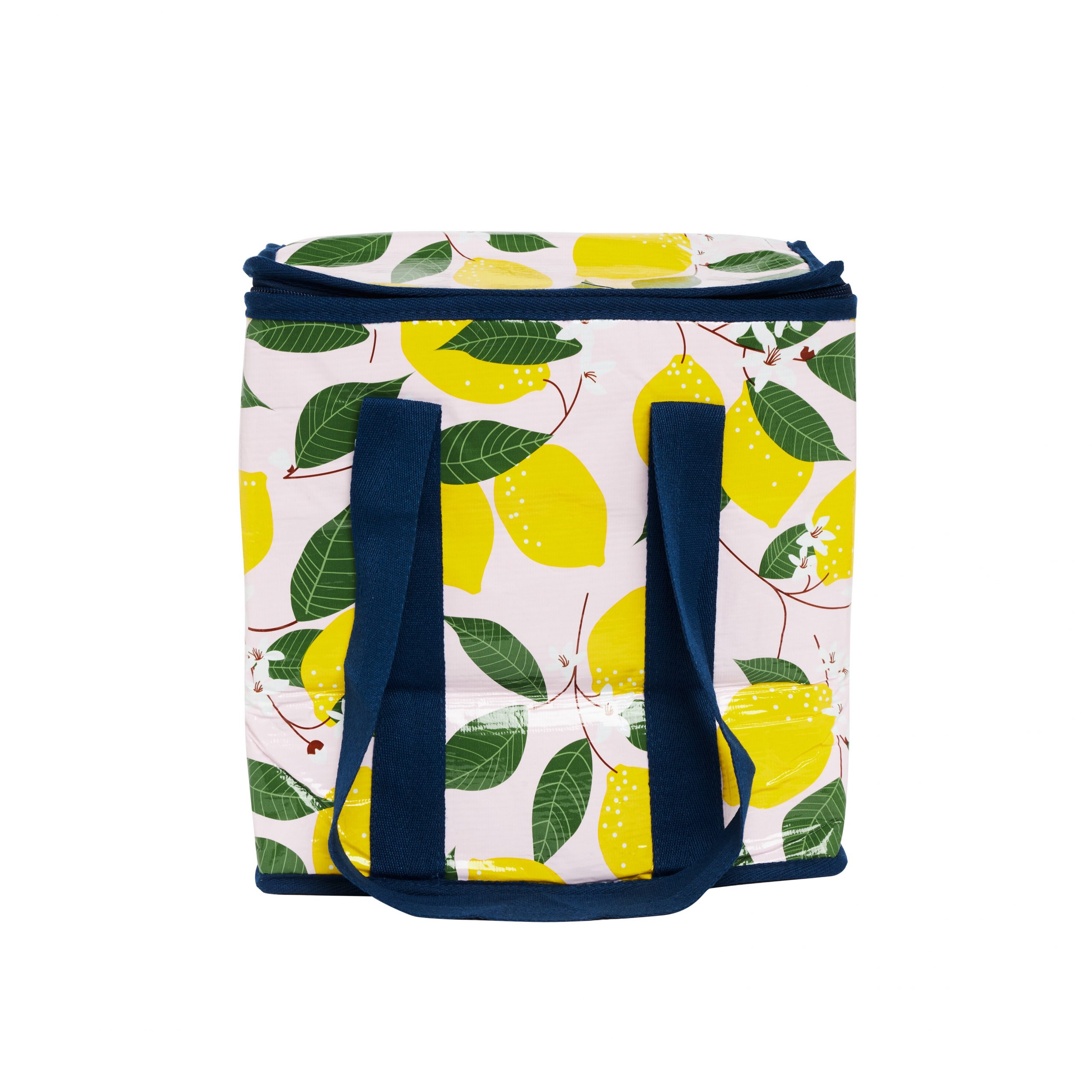 Project Ten Spring Lemons insulated